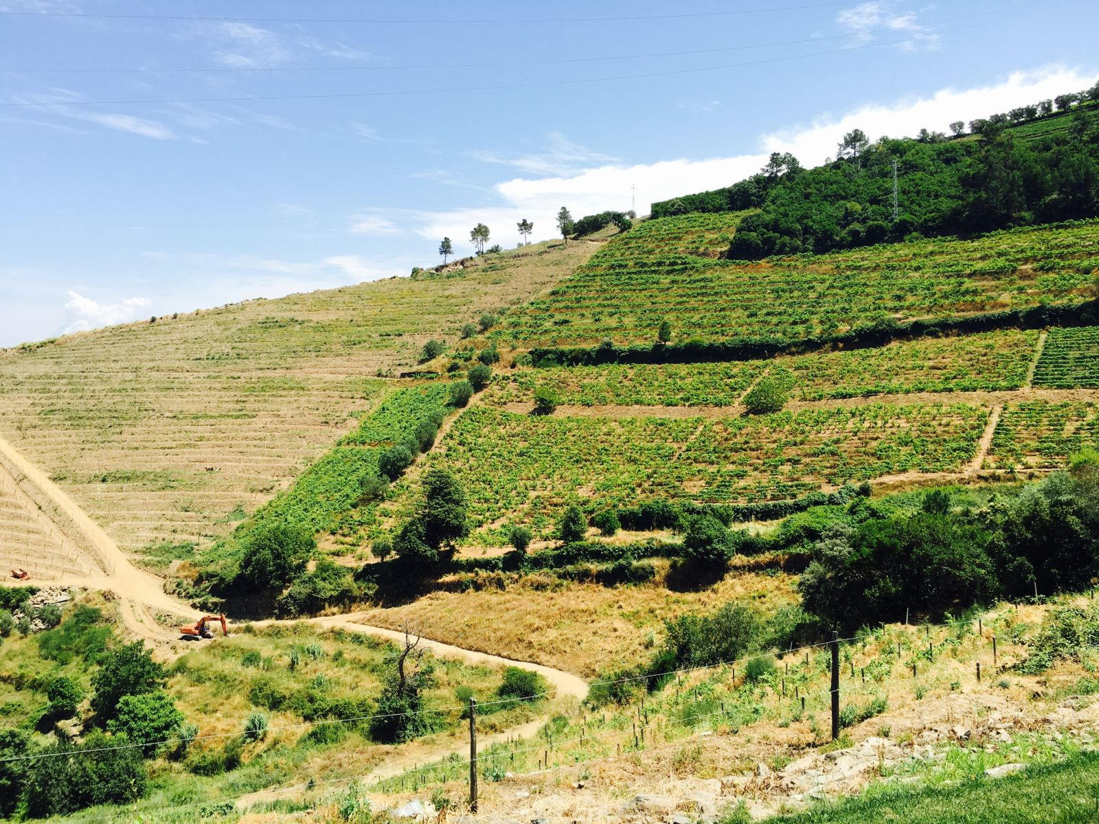douro valley pictures